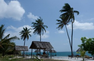 Mafia Island Lodge Beach