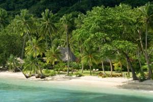 Qamea beach+bure_1