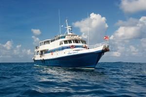 Carribean Explorer Boat 4