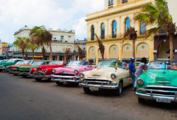 Cuban Cars - Amos